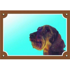 Barevná cedulka Pozor pes, Jezevčík hrubosrstý