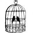 Klece pro ptáky