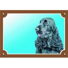 Barevná cedulka Pozor pes, Anglický kokr černý