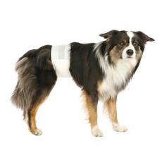 Papírové pleny pro psy L-XL 60-80 cm (12 ks/bal.)
