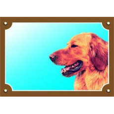 Barevná cedulka Pozor pes, Hovaward