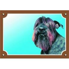 Barevná cedulka Pozor pes, Knírač černý