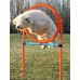 AGILITY kruh proskakovací Modrá/Oranžová 78x115cm TR