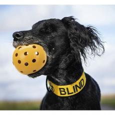 Děrovaný míč s rolničkou, pro slepé psy,  ø 7 cm